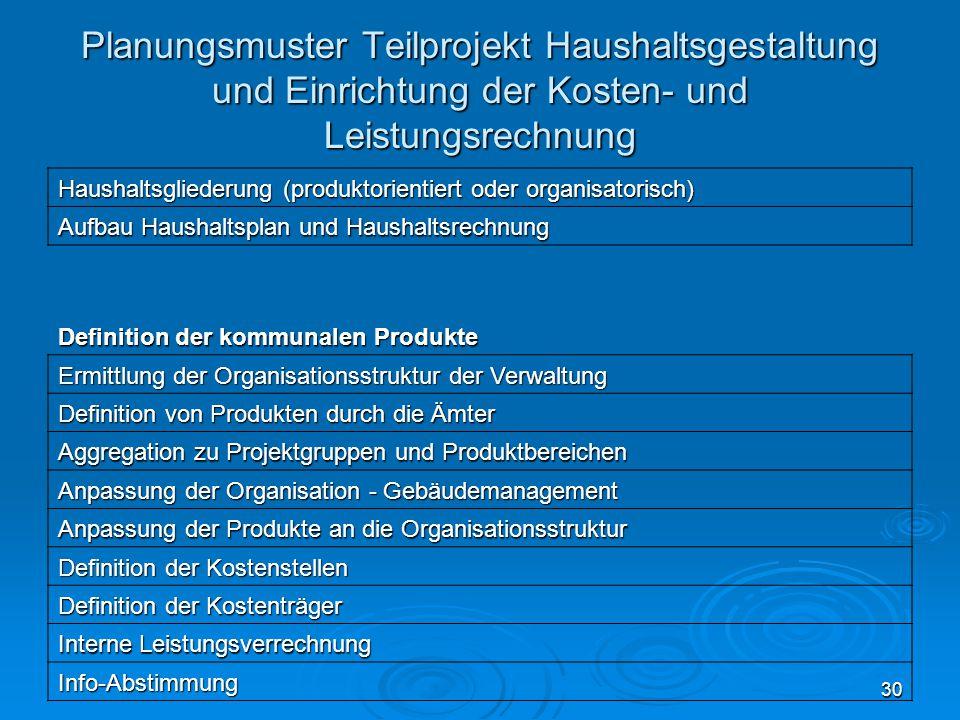 30 Planungsmuster Teilprojekt Haushaltsgestaltung und Einrichtung der Kosten- und Leistungsrechnung Haushaltsgliederung (produktorientiert oder organi