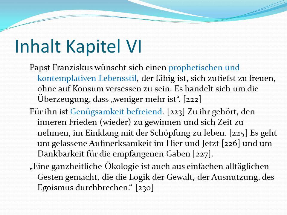 Inhalt Kapitel VI Papst Franziskus wünscht sich einen prophetischen und kontemplativen Lebensstil, der fähig ist, sich zutiefst zu freuen, ohne auf Ko