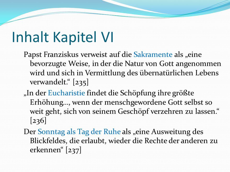 """Inhalt Kapitel VI Papst Franziskus verweist auf die Sakramente als """"eine bevorzugte Weise, in der die Natur von Gott angenommen wird und sich in Vermi"""