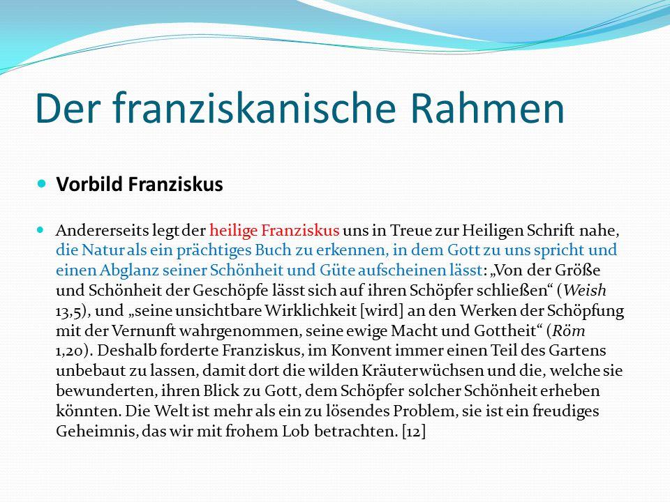 Der franziskanische Rahmen Vorbild Franziskus Andererseits legt der heilige Franziskus uns in Treue zur Heiligen Schrift nahe, die Natur als ein präch