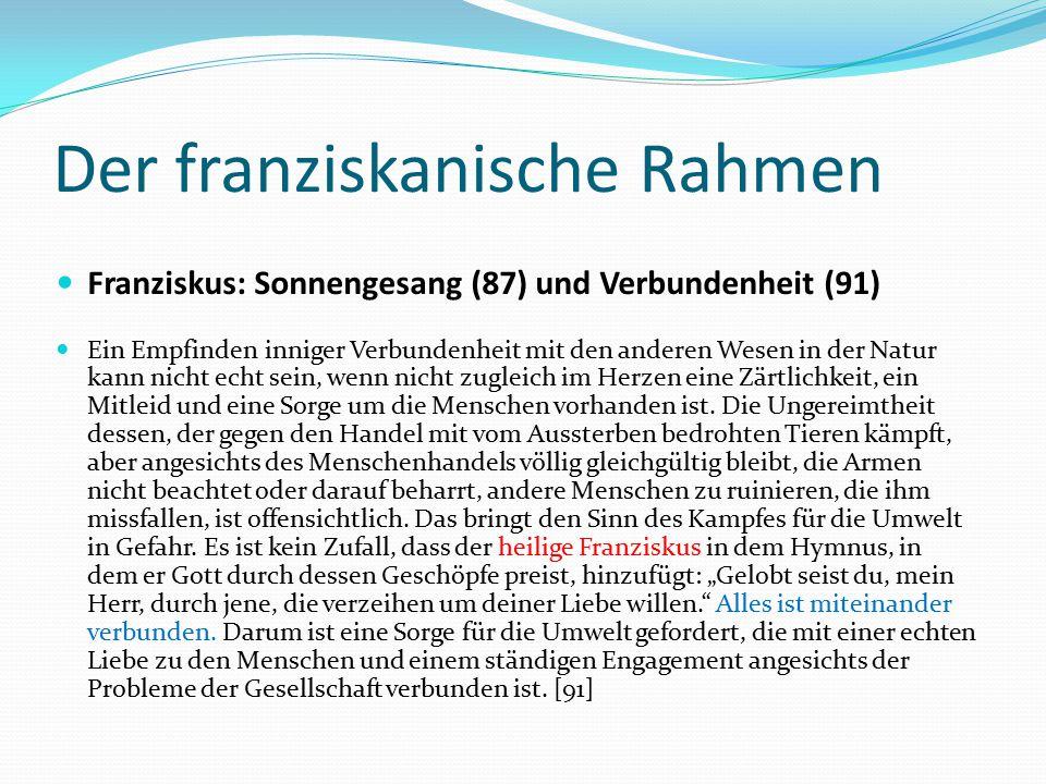 Der franziskanische Rahmen Franziskus: Sonnengesang (87) und Verbundenheit (91) Ein Empfinden inniger Verbundenheit mit den anderen Wesen in der Natur
