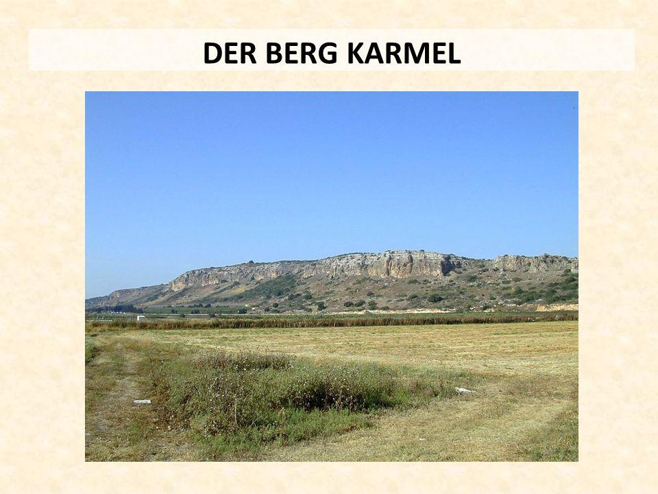 DER BERG KARMEL