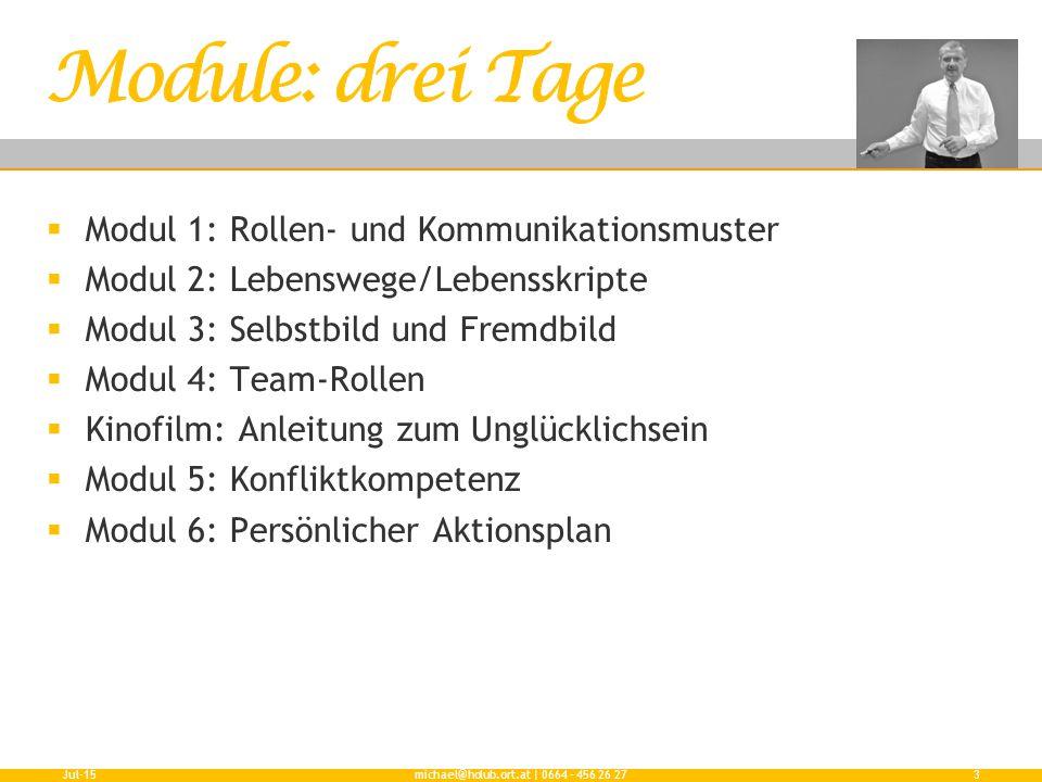  Modul 1: Rollen- und Kommunikationsmuster  Modul 2: Lebenswege/Lebensskripte  Modul 3: Selbstbild und Fremdbild  Modul 4: Team-Rollen  Kinofilm:
