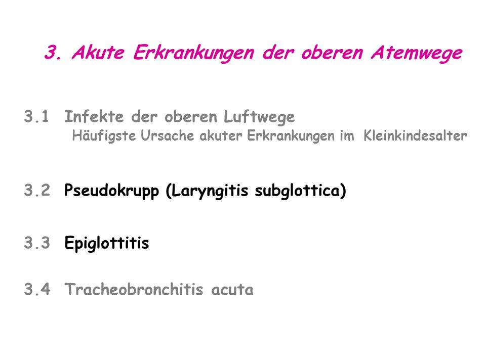 3. Akute Erkrankungen der oberen Atemwege 3.1 Infekte der oberen Luftwege Häufigste Ursache akuter Erkrankungen im Kleinkindesalter 3.2 Pseudokrupp (L