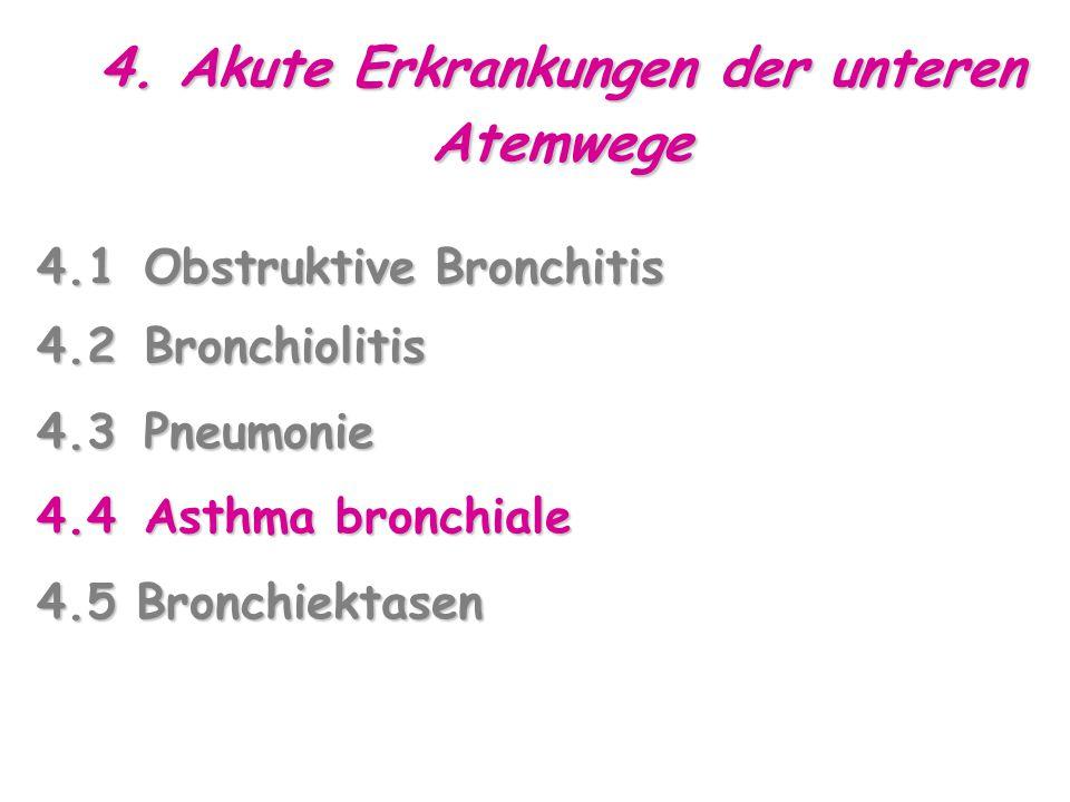 4.1Obstruktive Bronchitis 4.2Bronchiolitis 4.3Pneumonie 4.4Asthma bronchiale 4.5 Bronchiektasen