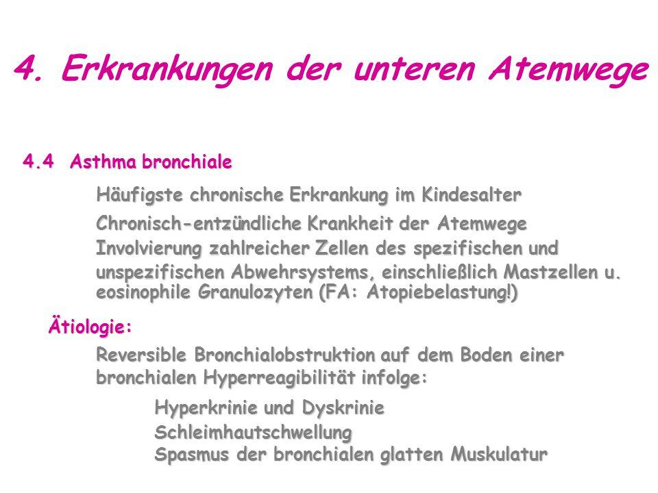 4. Erkrankungen der unteren Atemwege 4.4 Asthma bronchiale Häufigste chronische Erkrankung im Kindesalter Chronisch-entzündliche Krankheit der Atemweg