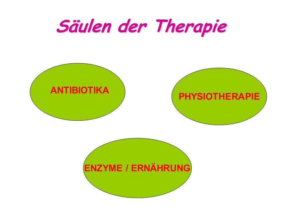 Säulen der Therapie ANTIBIOTIKA PHYSIOTHERAPIE ENZYME / ERNÄHRUNG