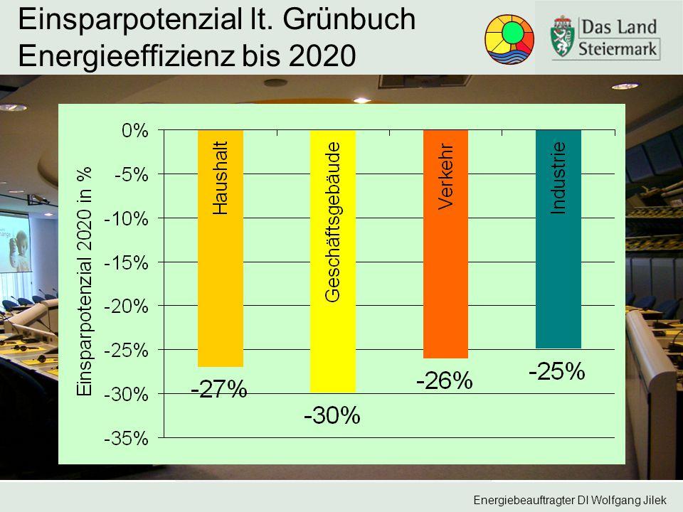 Energiebeauftragter DI Wolfgang Jilek Einsparpotenzial lt. Grünbuch Energieeffizienz bis 2020