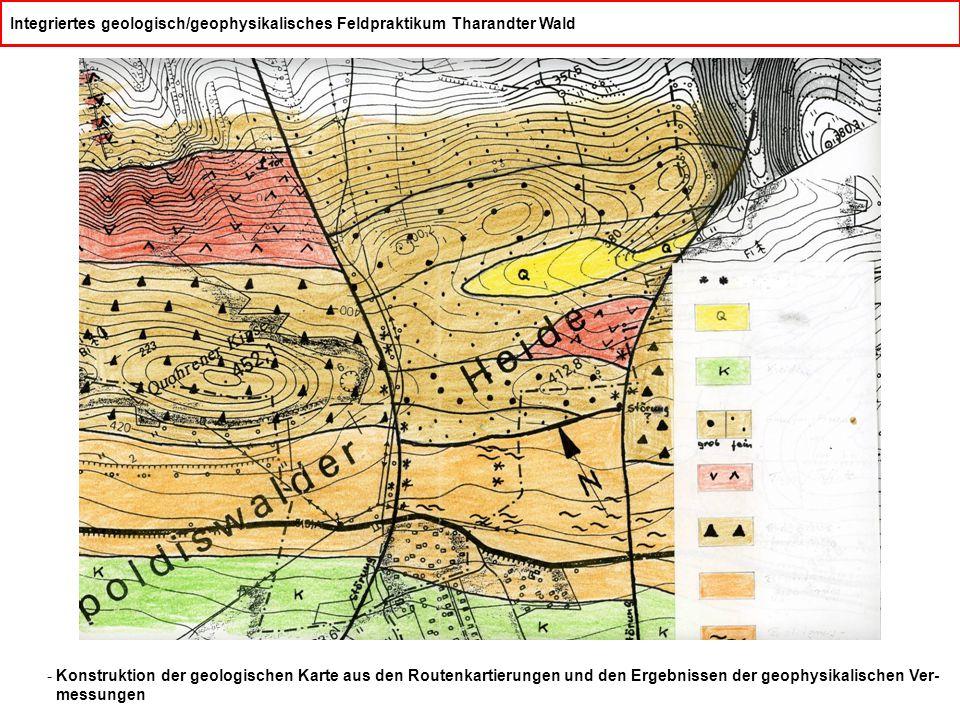 Integriertes geologisch/geophysikalisches Feldpraktikum Tharandter Wald - Konstruktion der geologischen Karte aus den Routenkartierungen und den Ergebnissen der geophysikalischen Ver- messungen
