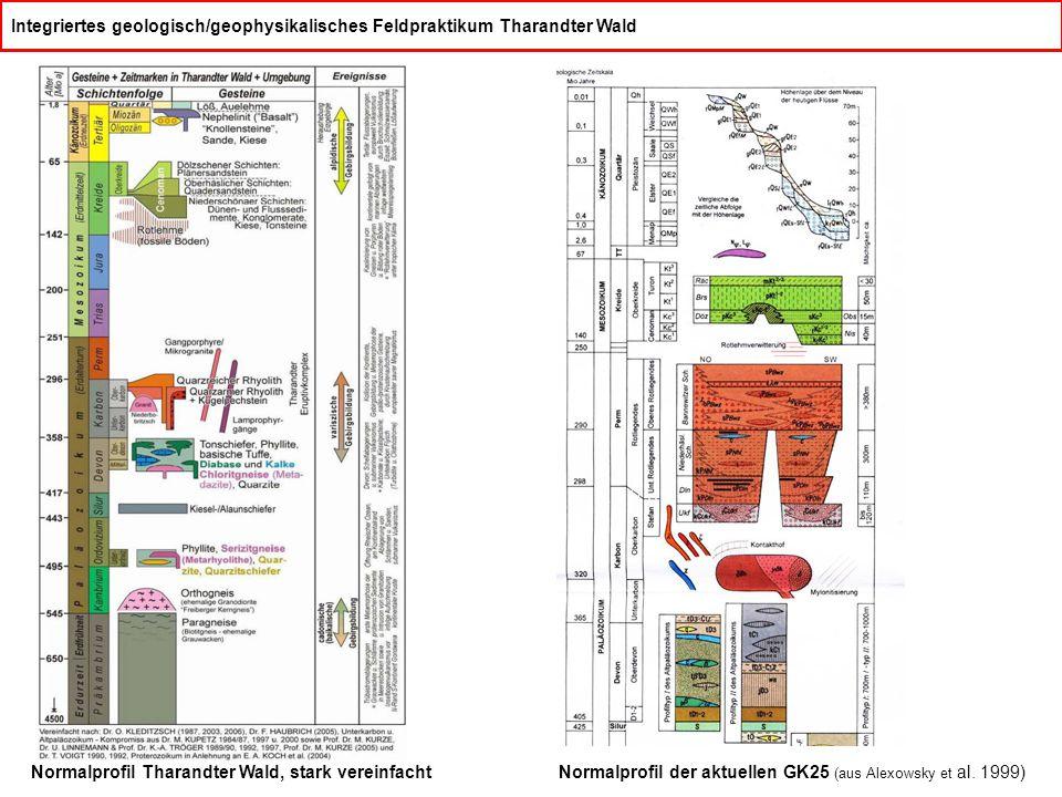 Integriertes geologisch/geophysikalisches Feldpraktikum Tharandter Wald Normalprofil Tharandter Wald, stark vereinfachtNormalprofil der aktuellen GK25