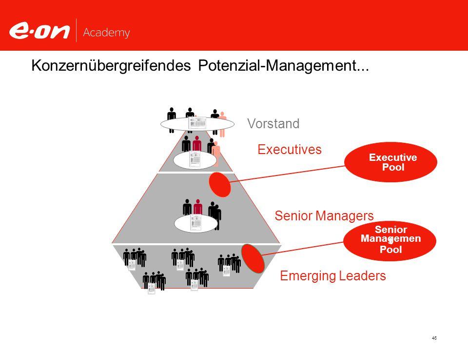 46 Konzernübergreifendes Potenzial-Management...