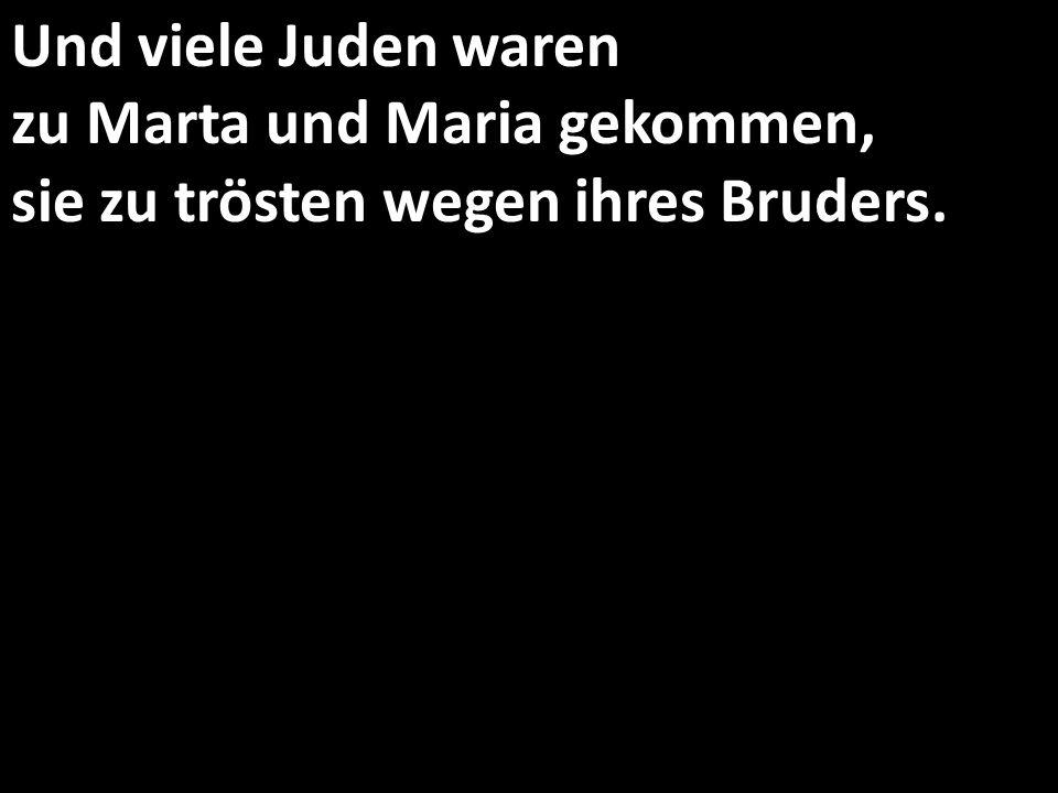 Und viele Juden waren zu Marta und Maria gekommen, sie zu trösten wegen ihres Bruders.