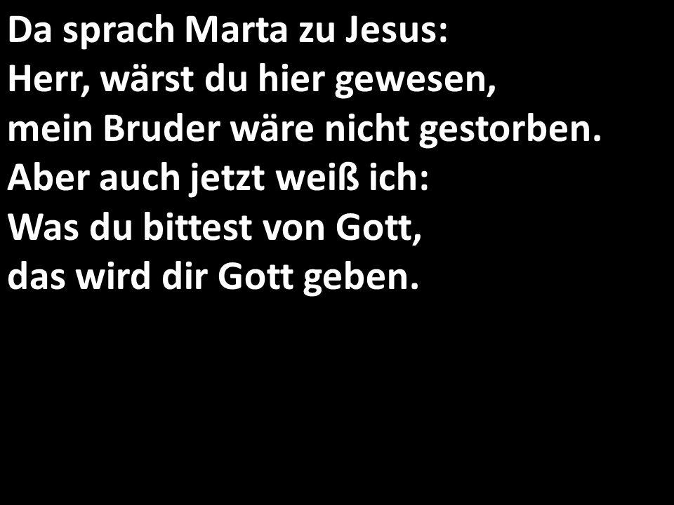 Da sprach Marta zu Jesus: Herr, wärst du hier gewesen, mein Bruder wäre nicht gestorben.