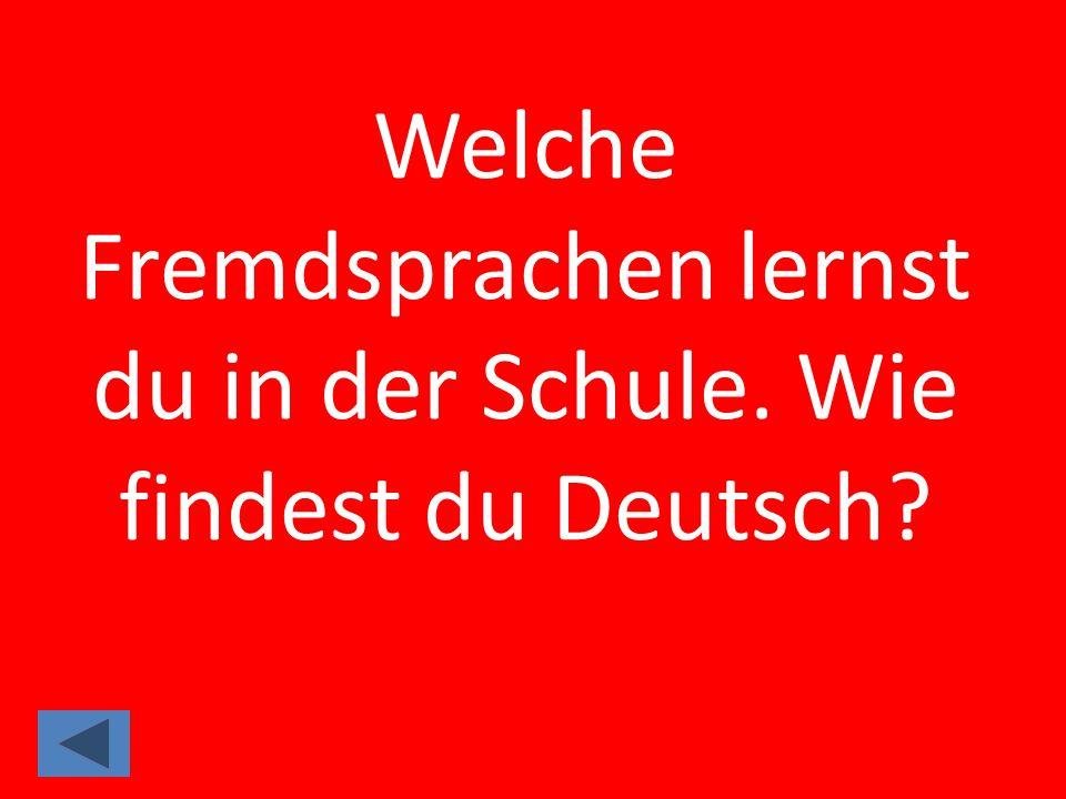 Welche Fremdsprachen lernst du in der Schule. Wie findest du Deutsch