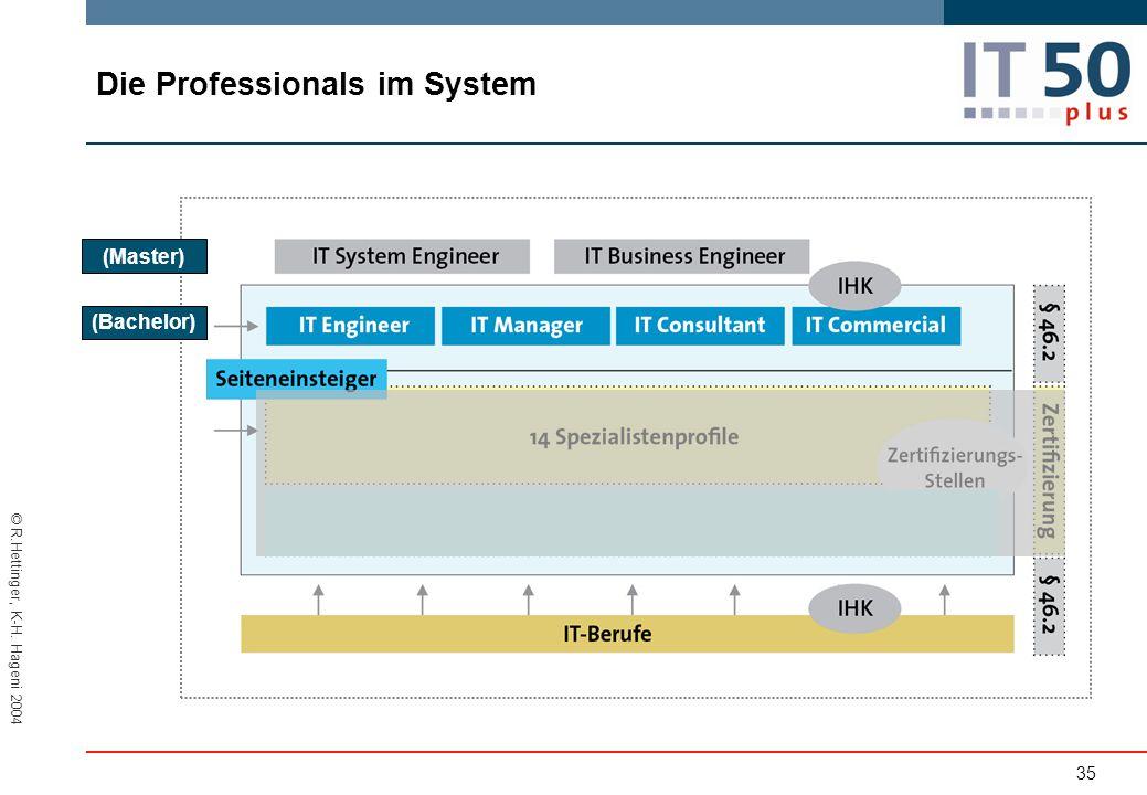 © R.Hettinger, K-H. Hageni 2004 Die Professionals im System 35 (Master) (Bachelor)