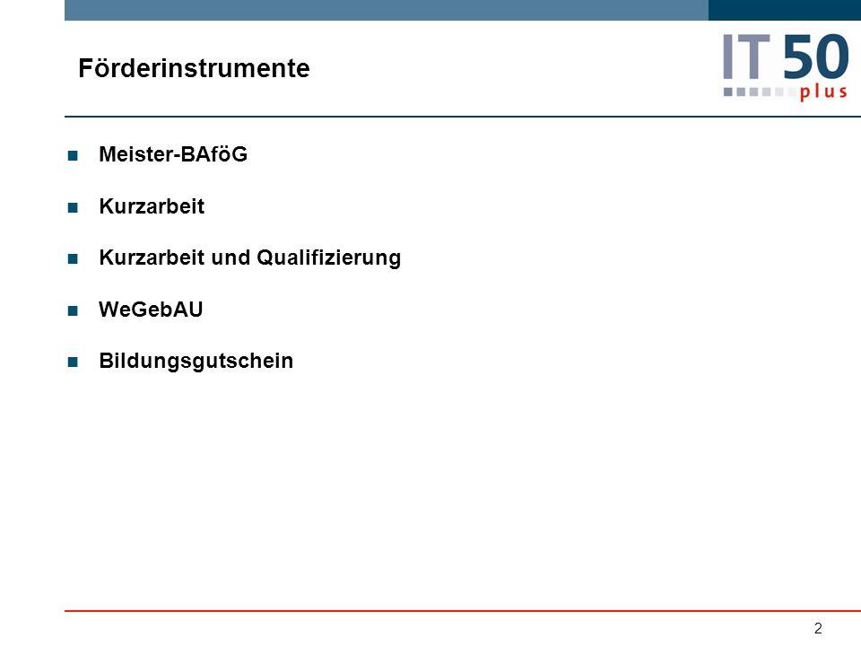 Meister-BAföG Kurzarbeit Kurzarbeit und Qualifizierung WeGebAU Bildungsgutschein Förderinstrumente 2