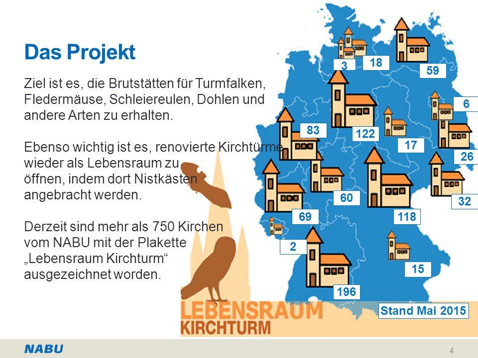 Das Projekt Ziel ist es, die Brutstätten für Turmfalken, Fledermäuse, Schleiereulen, Dohlen und andere Arten zu erhalten.