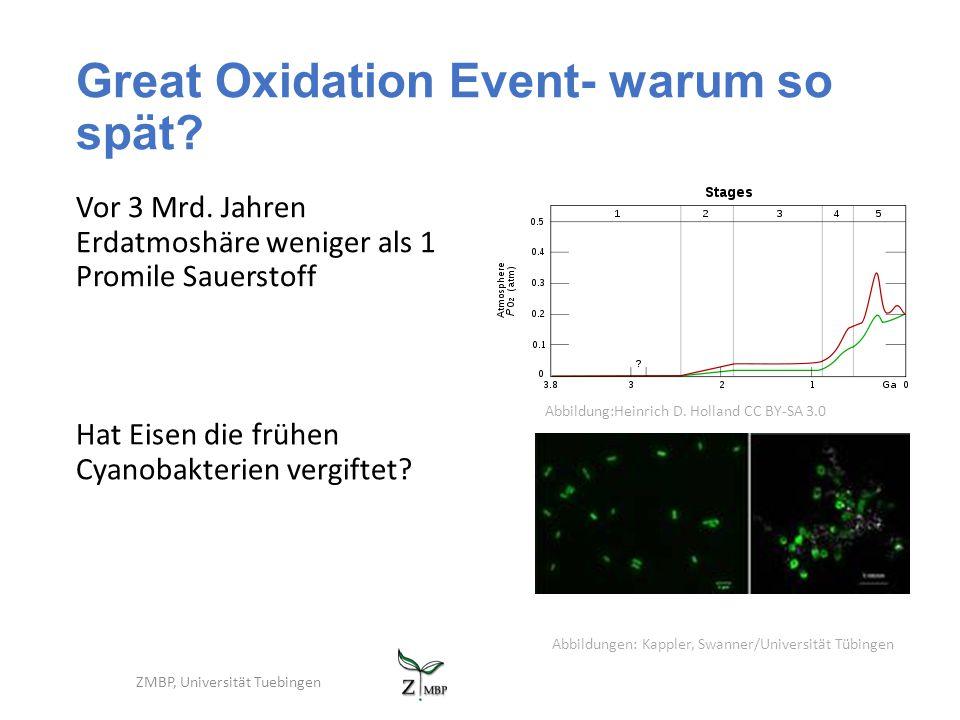 Great Oxidation Event- warum so spät? Vor 3 Mrd. Jahren Erdatmoshäre weniger als 1 Promile Sauerstoff ZMBP, Universität Tuebingen Hat Eisen die frühen