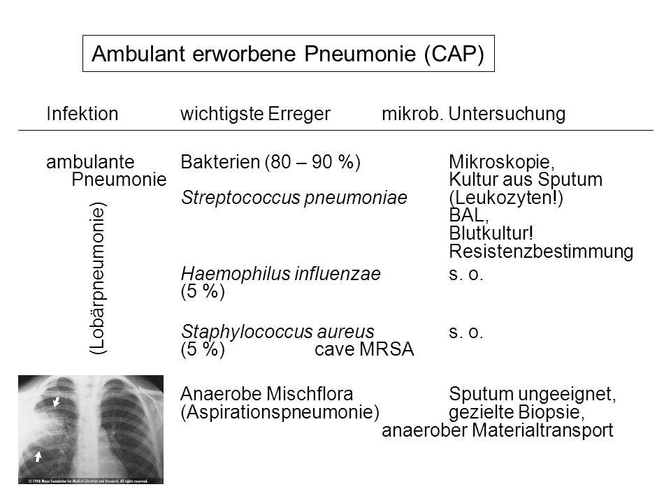 Ambulant erworbene Pneumonie (CAP) ambulanteBakterien (80 – 90 %)Mikroskopie, Pneumonie Kultur aus Sputum Streptococcus pneumoniae(Leukozyten!) BAL, B