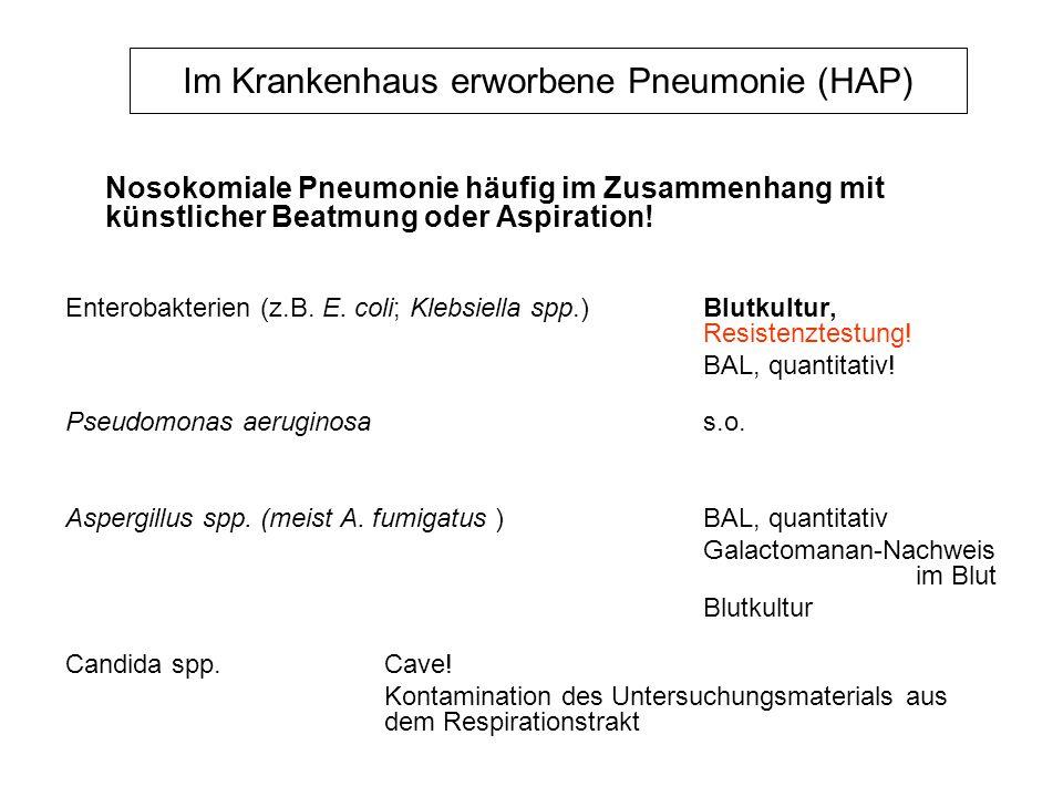 Im Krankenhaus erworbene Pneumonie (HAP) Nosokomiale Pneumonie häufig im Zusammenhang mit künstlicher Beatmung oder Aspiration! Enterobakterien (z.B.