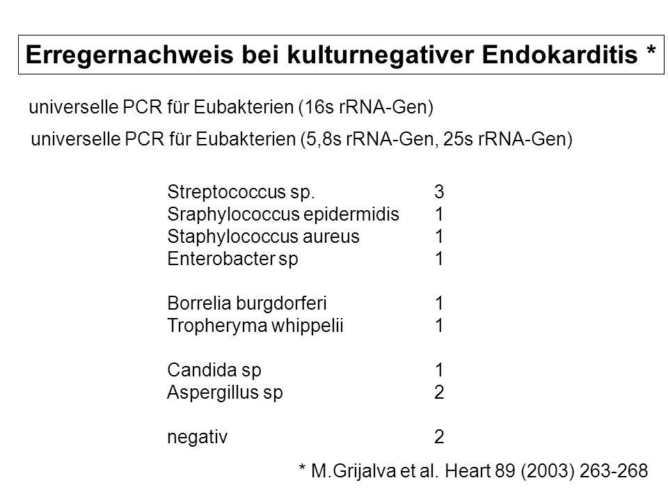 Erregernachweis bei kulturnegativer Endokarditis * universelle PCR für Eubakterien (16s rRNA-Gen) universelle PCR für Eubakterien (5,8s rRNA-Gen, 25s