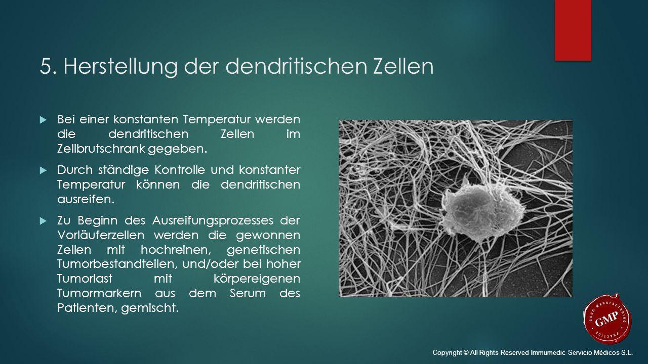 5. Herstellung der dendritischen Zellen  Bei einer konstanten Temperatur werden die dendritischen Zellen im Zellbrutschrank gegeben.  Durch ständige