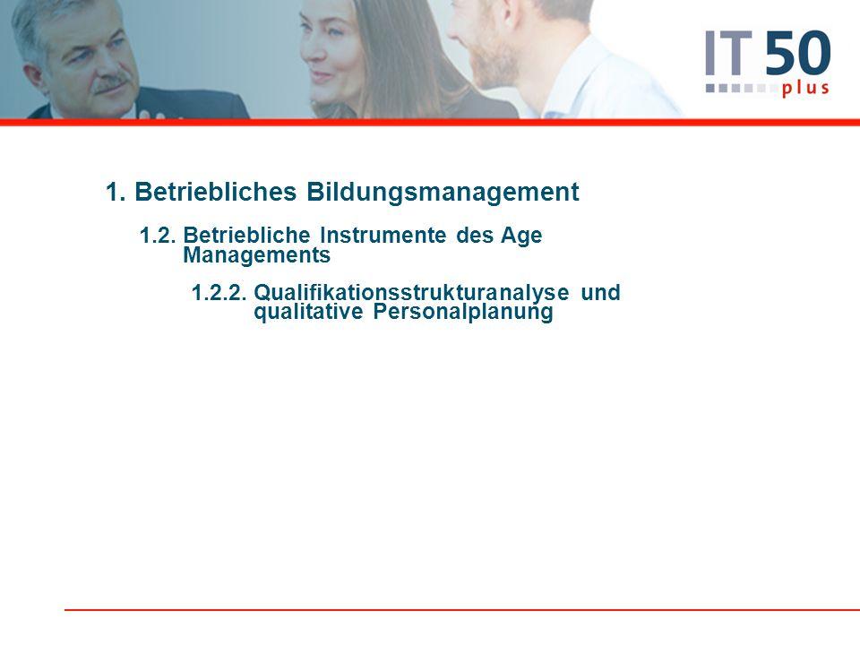 1. Betriebliches Bildungsmanagement 1.2. Betriebliche Instrumente des Age Managements 1.2.2. Qualifikationsstrukturanalyse und qualitative Personalpla