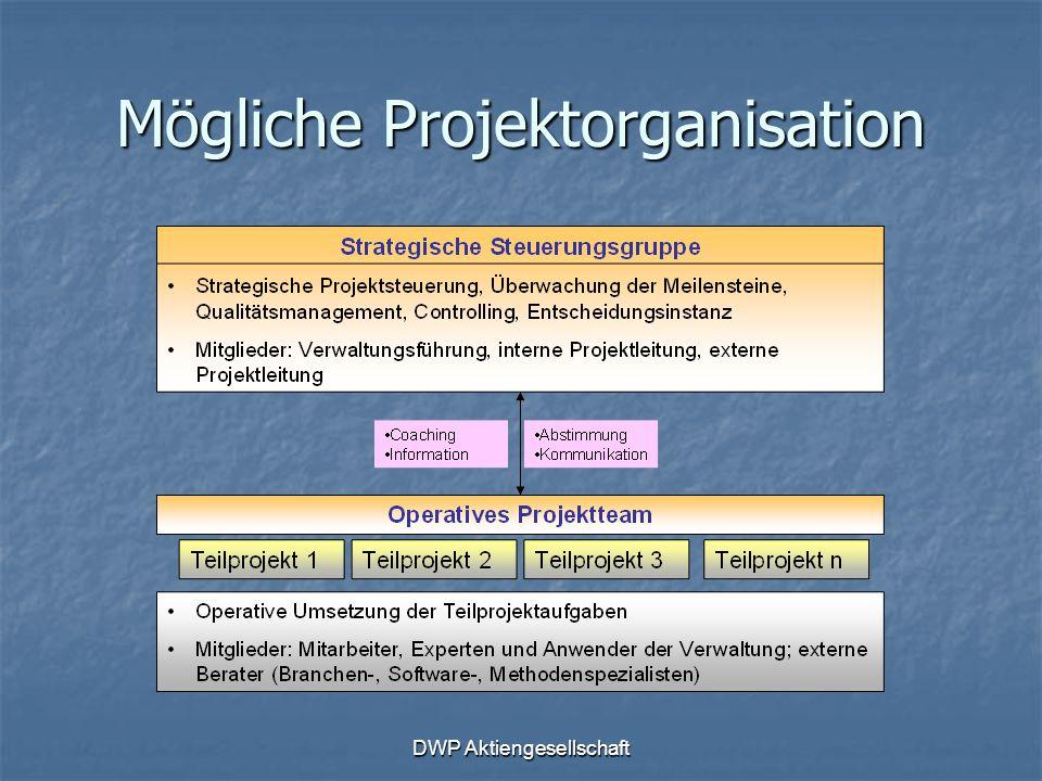 DWP Aktiengesellschaft Mögliche Projektorganisation