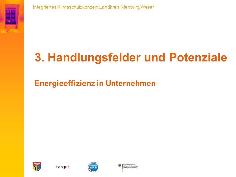 Integriertes Klimaschutzkonzept Landkreis Nienburg/Weser 3. Handlungsfelder und Potenziale Energieeffizienz in Unternehmen