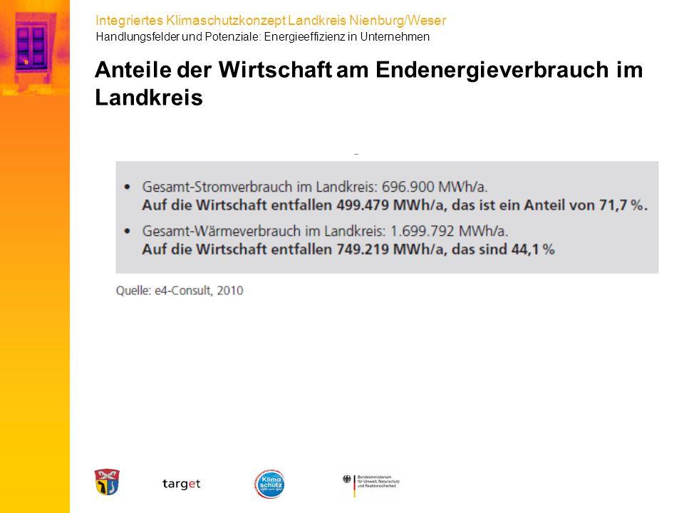 Integriertes Klimaschutzkonzept Landkreis Nienburg/Weser Anteile der Wirtschaft am Endenergieverbrauch im Landkreis Handlungsfelder und Potenziale: En