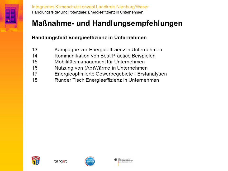 Integriertes Klimaschutzkonzept Landkreis Nienburg/Weser Maßnahme- und Handlungsempfehlungen Handlungsfeld Energieeffizienz in Unternehmen 13Kampagne