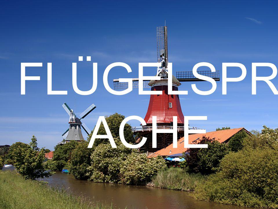 FLÜGELSPR ACHE