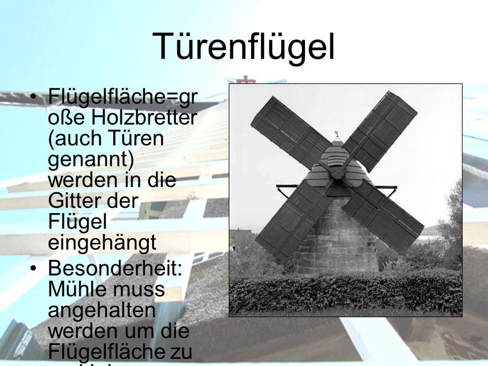Türenflügel Flügelfläche=gr oße Holzbretter (auch Türen genannt) werden in die Gitter der Flügel eingehängt Besonderheit: Mühle muss angehalten werden