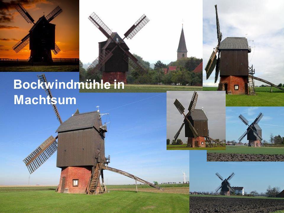 Bockwindmühle in Machtsum