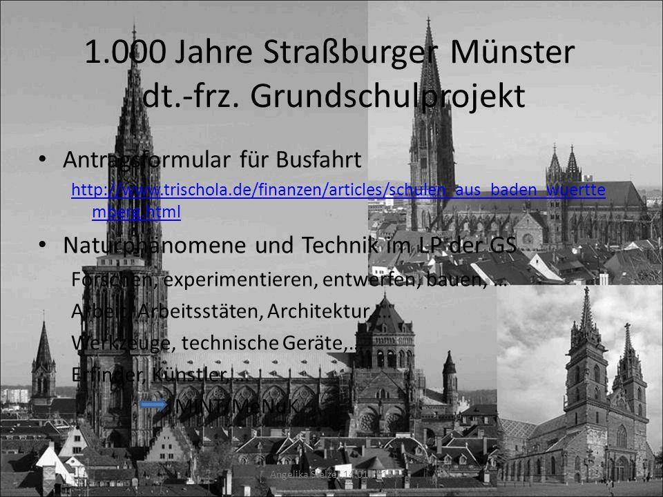 1.000 Jahre Straßburger Münster dt.-frz. Grundschulprojekt Antragsformular für Busfahrt http://www.trischola.de/finanzen/articles/schulen_aus_baden_wu