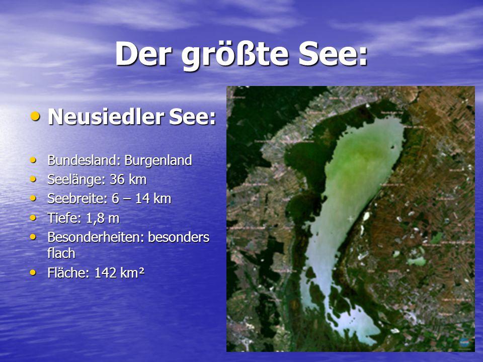 Der größte See: Neusiedler See: Neusiedler See: Bundesland: Burgenland Bundesland: Burgenland Seelänge: 36 km Seelänge: 36 km Seebreite: 6 – 14 km See