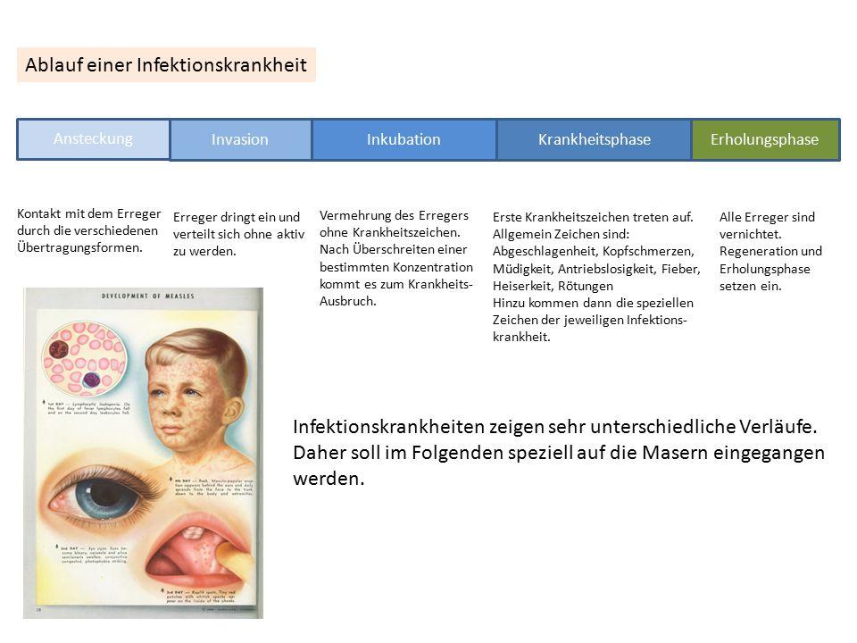 Ablauf einer Infektionskrankheit Ansteckung Invasion Inkubation Krankheitsphase Erholungsphase Kontakt mit dem Erreger durch die verschiedenen Übertra