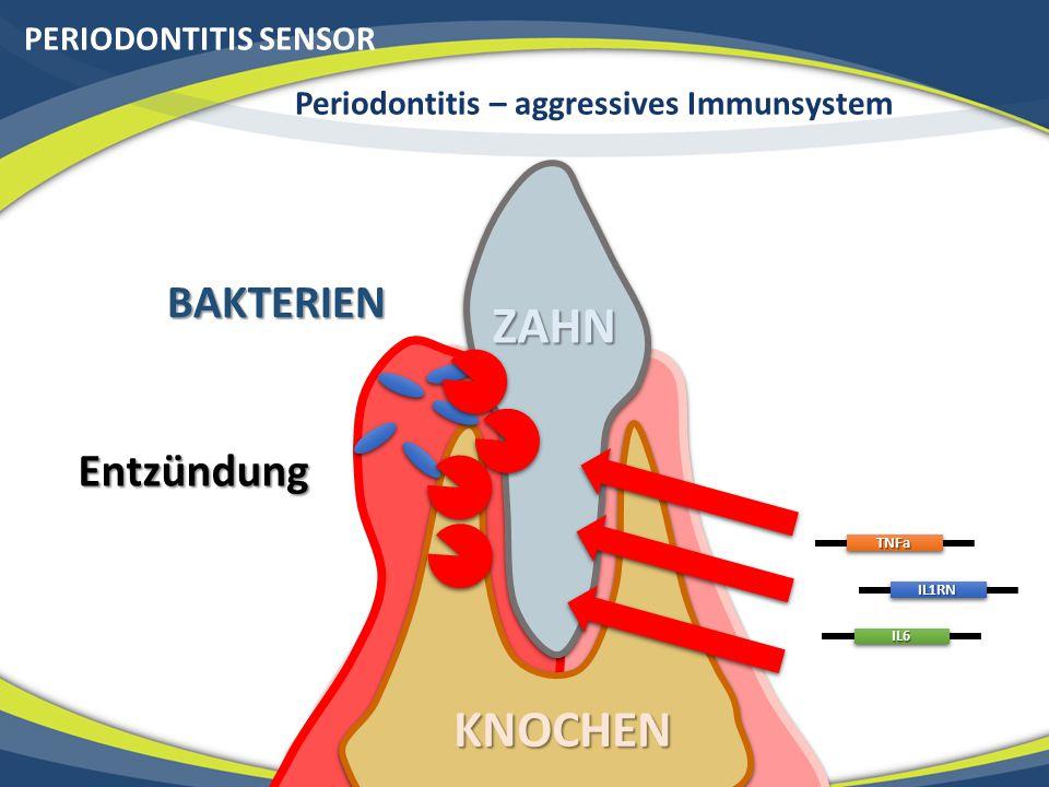 KNOCHEN PERIODONTITIS SENSOR BAKTERIEN EntzündungTNFa IL1RN IL6ZAHN Periodontitis – aggressives Immunsystem
