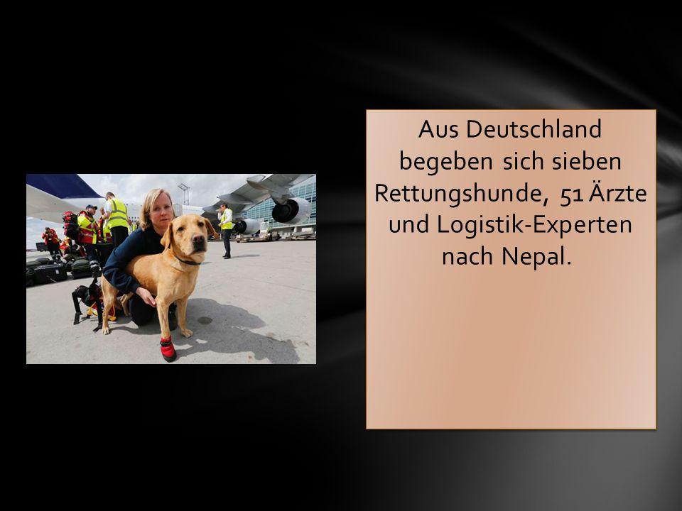 Aus Deutschland begeben sich sieben Rettungshunde, 51 Ärzte und Logistik-Experten nach Nepal.