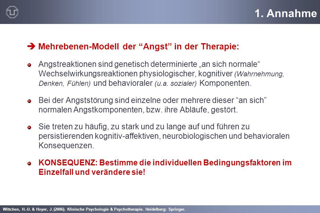 """Wittchen, H.-U. & Hoyer, J. (2006). Klinische Psychologie & Psychotherapie. Heidelberg: Springer. 1. Annahme  Mehrebenen-Modell der """"Angst"""" in der Th"""