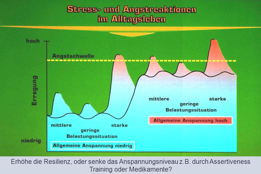 Erhöhe die Resilienz, oder senke das Anspannungsniveau z.B. durch Assertiveness Training oder Medikamente?