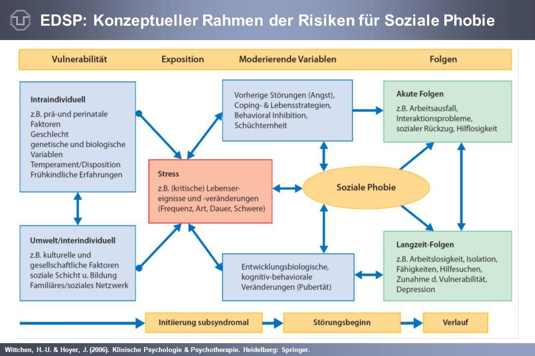 Wittchen, H.-U. & Hoyer, J. (2006). Klinische Psychologie & Psychotherapie. Heidelberg: Springer. EDSP: Konzeptueller Rahmen der Risiken für Soziale P