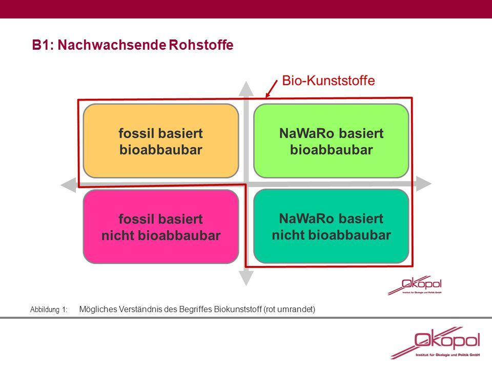 Abbildung 1: Mögliches Verständnis des Begriffes Biokunststoff (rot umrandet) B1: Nachwachsende Rohstoffe