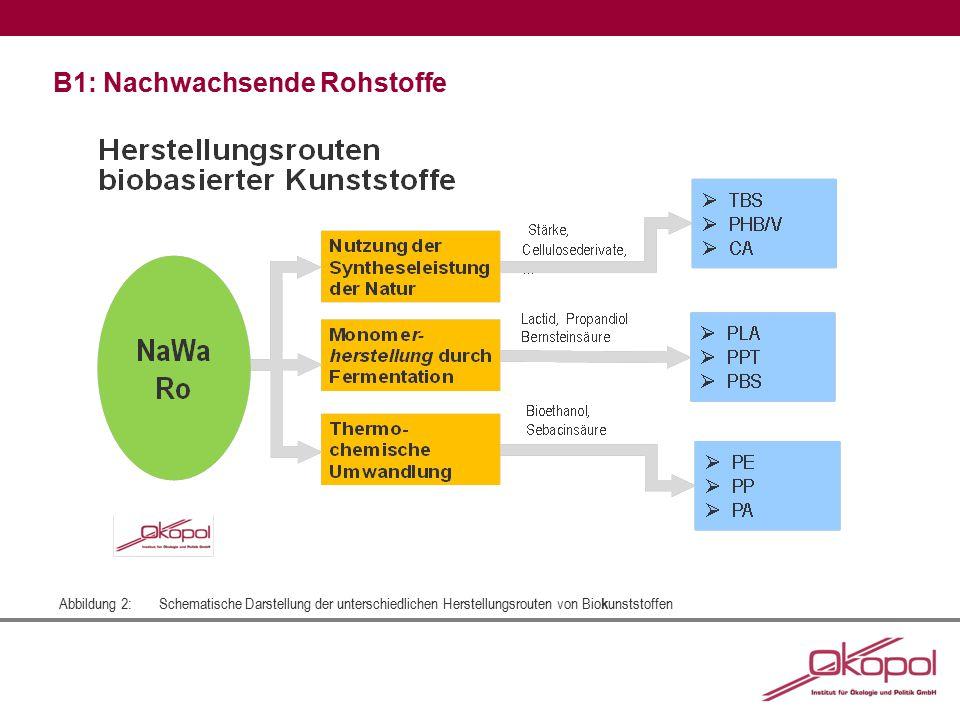 Abbildung 2: Schematische Darstellung der unterschiedlichen Herstellungsrouten von Bio k unststoffen