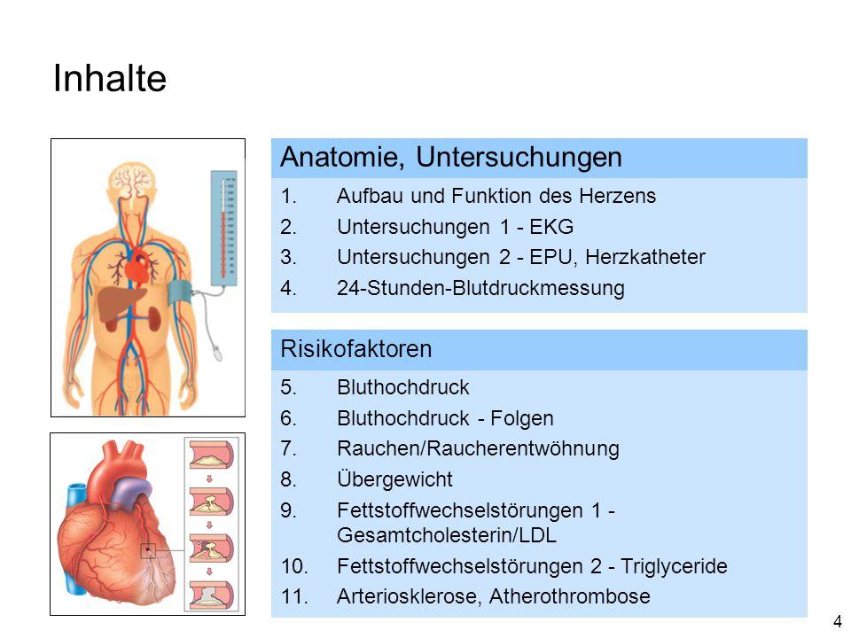 4 Inhalte Anatomie, Untersuchungen 1.Aufbau und Funktion des Herzens 2.Untersuchungen 1 - EKG 3.Untersuchungen 2 - EPU, Herzkatheter 4.24-Stunden-Blut