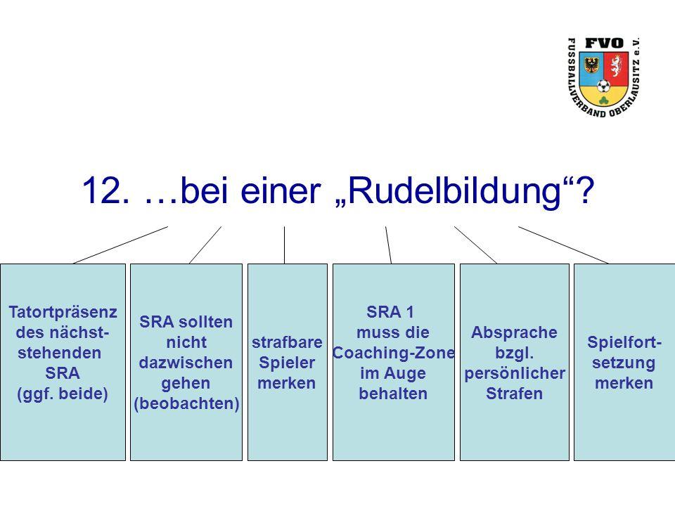 """12. …bei einer """"Rudelbildung . Tatortpräsenz des nächst- stehenden SRA (ggf."""