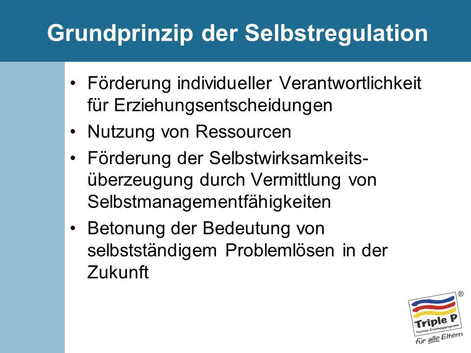 Grundprinzip der Selbstregulation Förderung individueller Verantwortlichkeit für Erziehungsentscheidungen Nutzung von Ressourcen Förderung der Selbstw