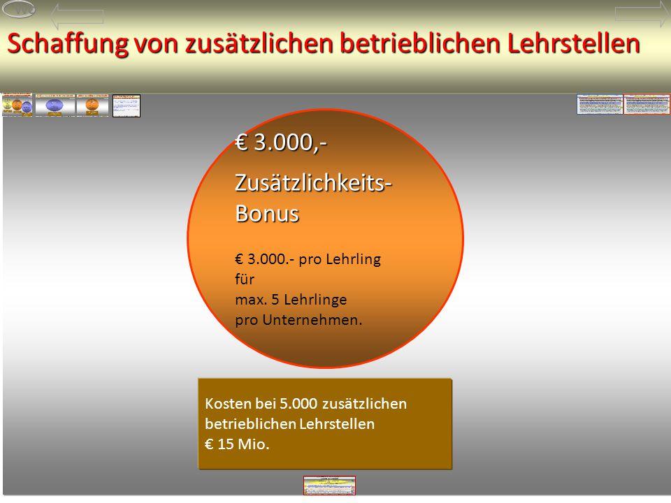 Kosten bei 5.000 zusätzlichen betrieblichen Lehrstellen € 15 Mio.