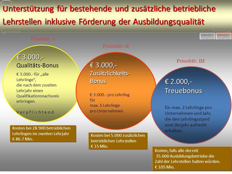 Unterstützung für bestehende und zusätzliche betriebliche Lehrstellen inklusive Förderung der Ausbildungsqualität Kosten bei 28.900 betrieblichen Lehrlingen im zweiten Lehrjahr € 86.7 Mio.