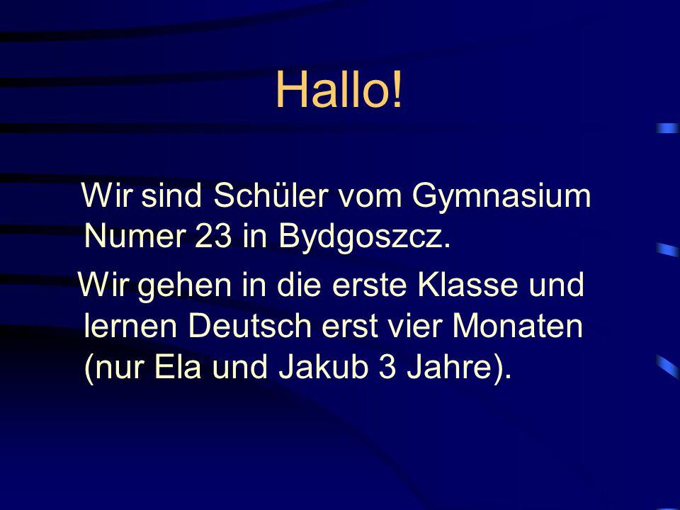 Hallo.Wir sind Schüler vom Gymnasium Numer 23 in Bydgoszcz.